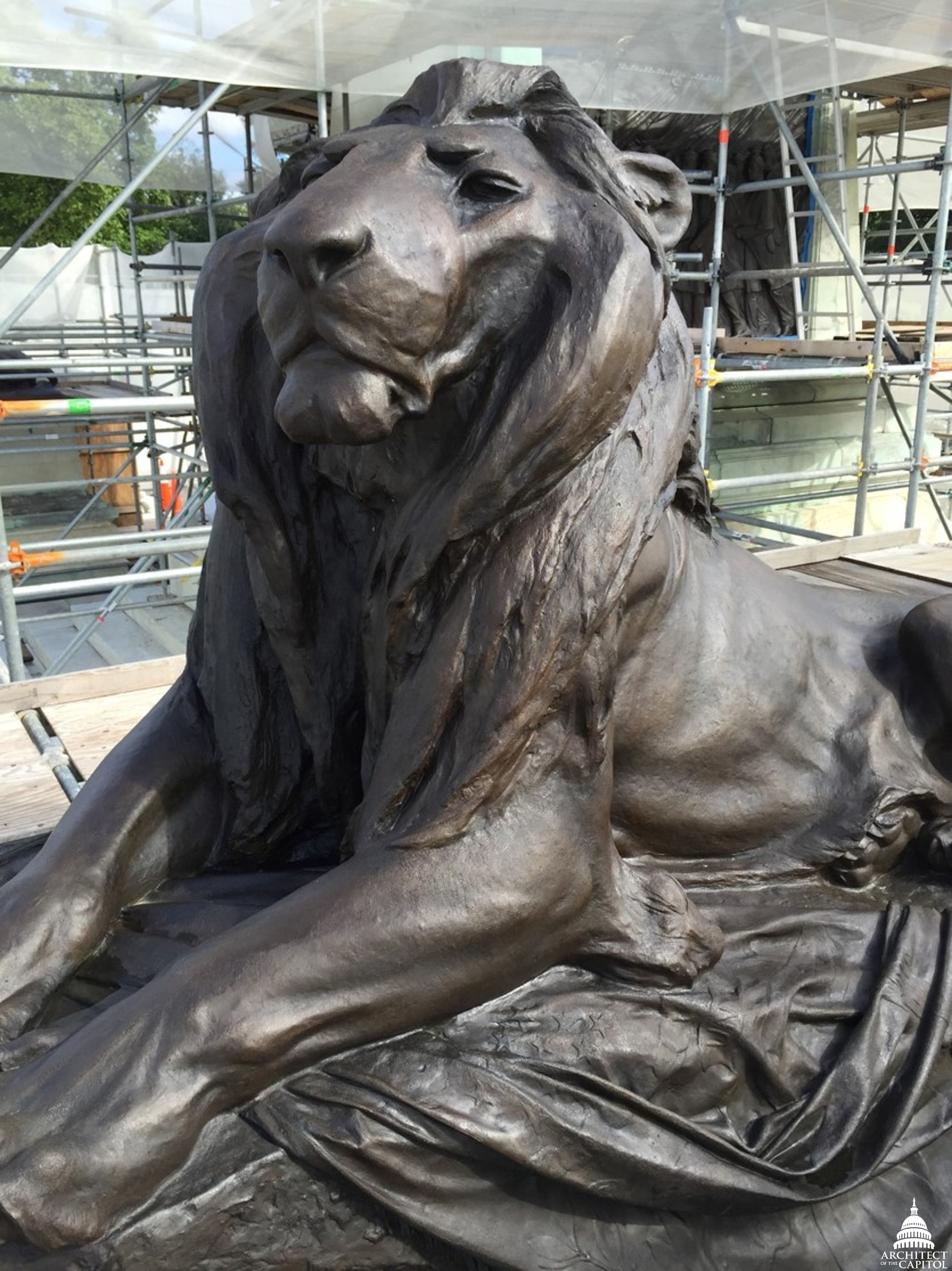 Grant Memorial lion after corrosion was removed from the sculpture.