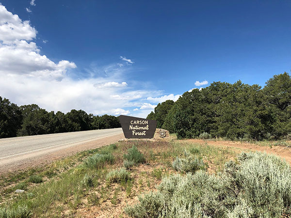 Welcome sign for the Carson National Forest in New Mexico.