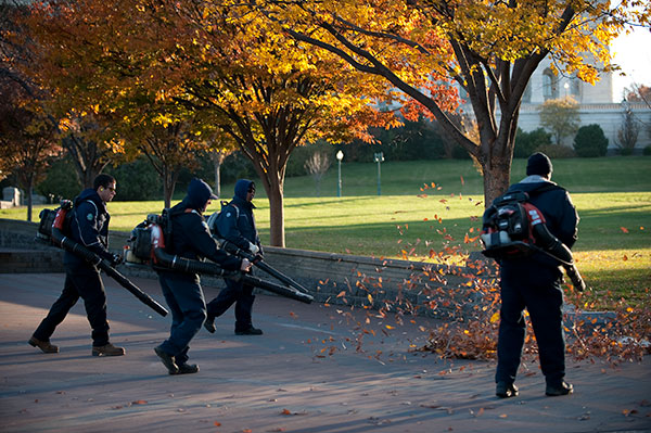 The AOC Capitol Grounds and Arboretum crew clears autumn leaves.