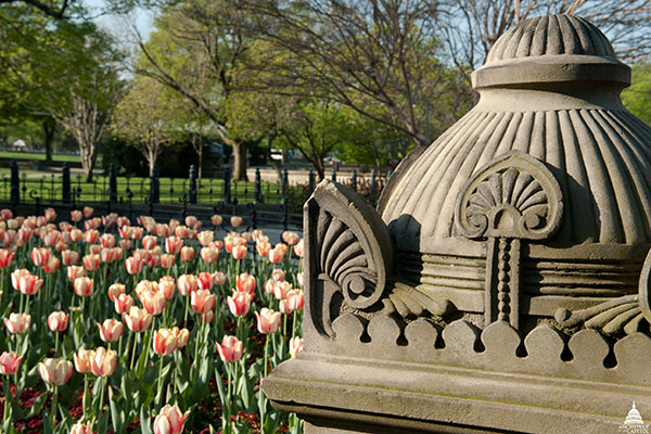 Tulips bloom near an Olmsted hardscape on the U.S. Capitol West Front.
