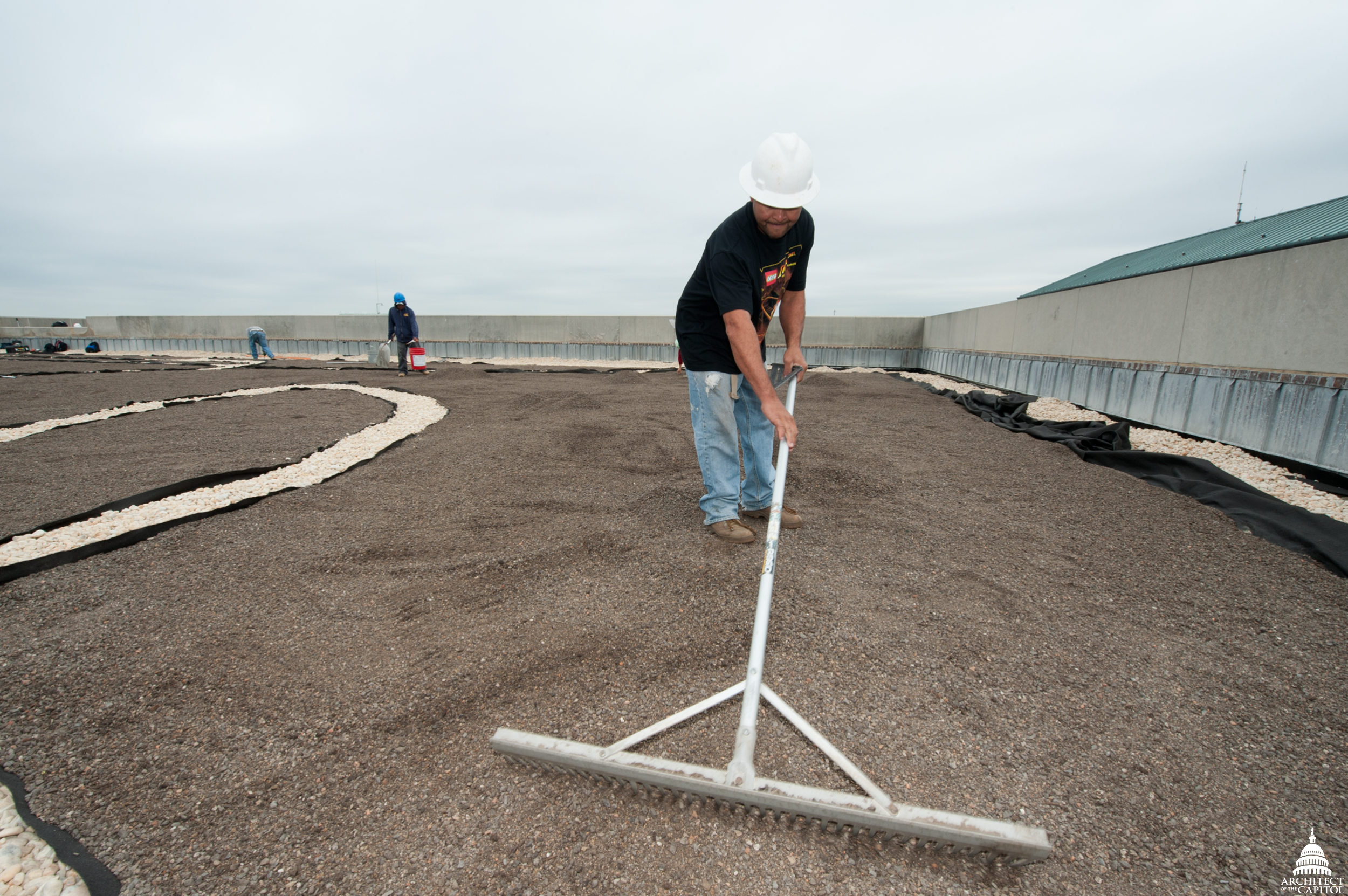 A worker levels the soil on the Dirksen Building roof. At this point of the project, the gravel ballast for the walkways has been installed.