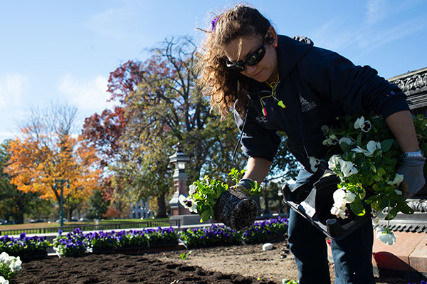 AOC Capitol Grounds and Arboretum preparing plant beds for spring during the autumn season.
