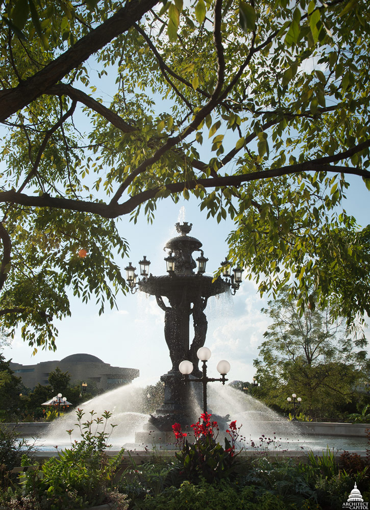 Most large trees, including the Kentucky coffee trees around the fountain, were saved in place.