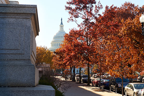 Height of the autumn season on the U.S. Capitol campus.