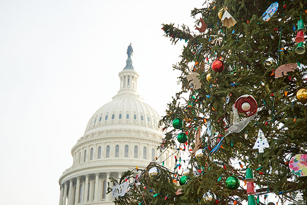 The U.S. Capitol Christmas Tree with ornaments in front of the Dome.