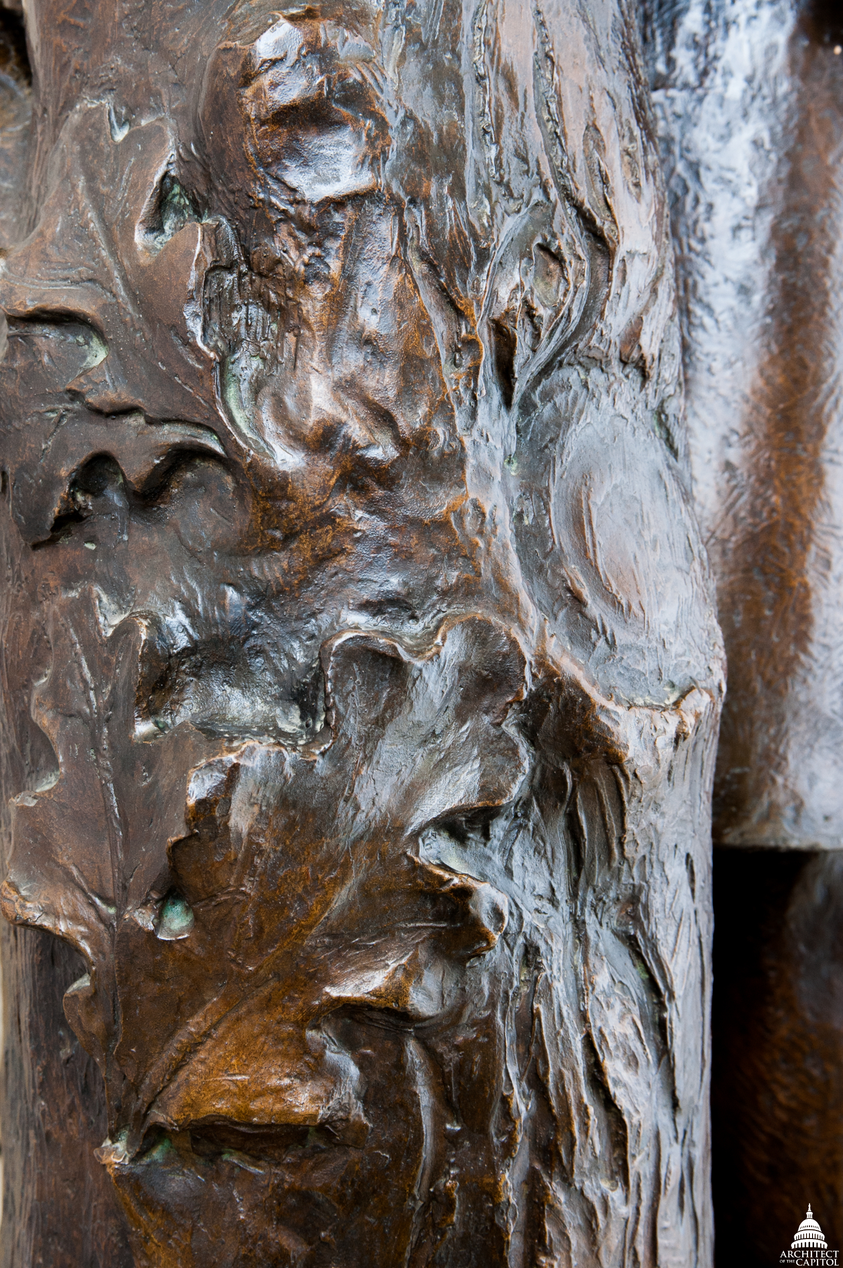 Up-close photo of tree trunk detail on J. Sterling Morton's statue in the U.S. Capitol.
