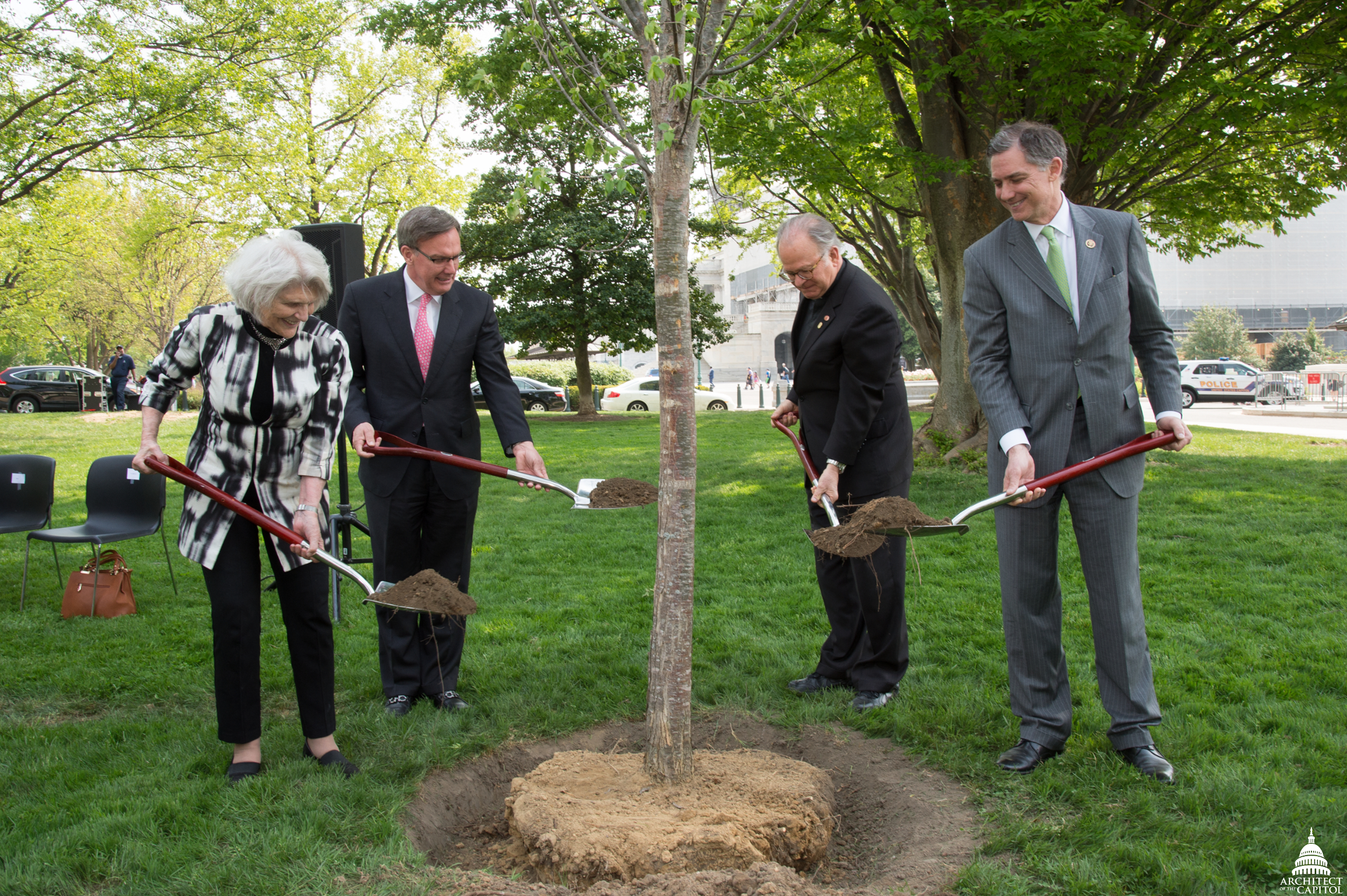 Tree planting ceremony with shovels.