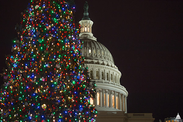 2017 U.S. Capitol Christmas Tree Lighting Ceremony