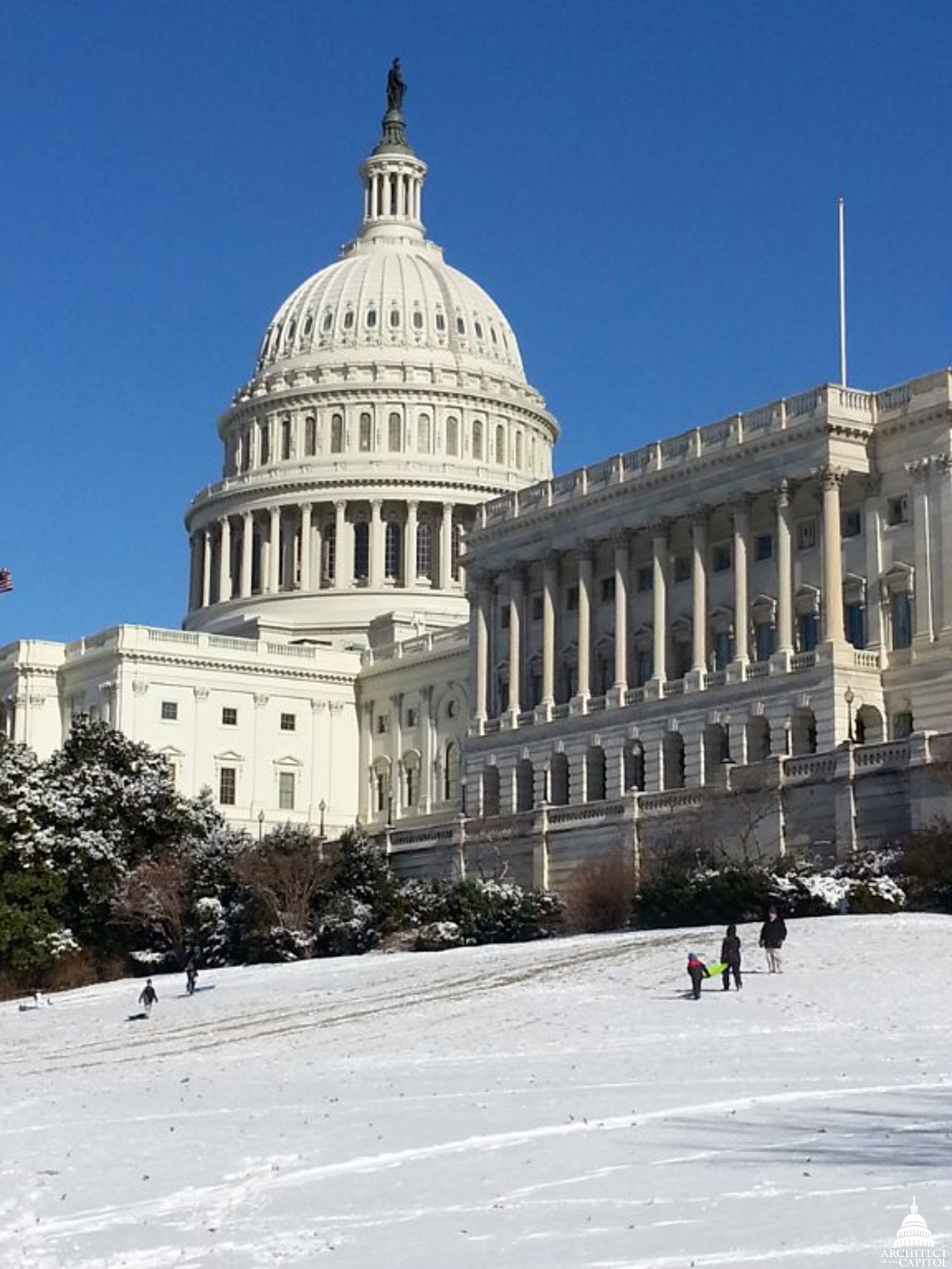 Sledding on the Capitol's West Front in 2014.