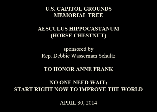 U.S. Capitol Grounds  Memorial Tree   Aesculus hippocastanum  (Horse Chestnut)   sponsored by  Rep. Debbie Wasserman Schultz   TO HONOR ANNE FRANK NO ONE NEED WAIT;  START RIGHT NOW TO IMPROVE THE WORLD   April 30, 2014