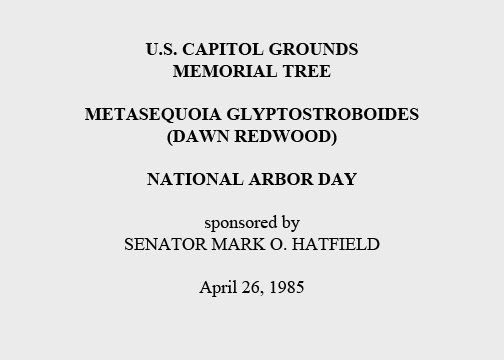 U.S. Capitol Grounds  Memorial Tree   Metasequoia glyptostroboides  (Dawn Redwood)   National Arbor Day   sponsored by  Senator Mark O. Hatfield   April 26, 1985