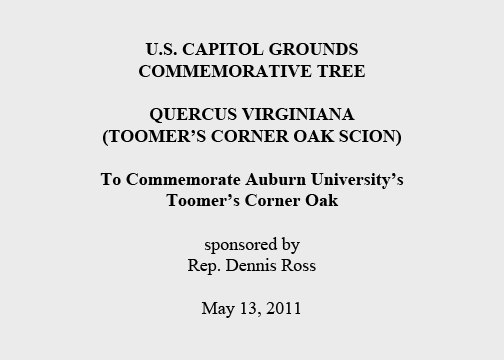 U.S. Capitol Grounds Commemorative Tree  Quercus Virginiana (Toomer's Corner Oak Scion)  To Commemorate Auburn University's Toomer's Corner Oak  sponsored by Rep. Dennis Ross  May 13, 2011
