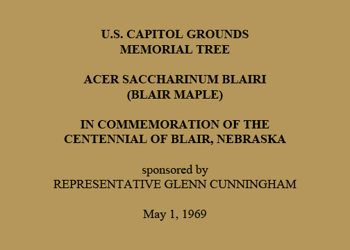 U.S. Capitol Grounds Memorial Tree  Acer saccharinum blairi (Blair Maple)  In Commemoration of the Centennial of Blair, Nebraska  sponsored by Representative Glenn Cunningham  May 1, 1969