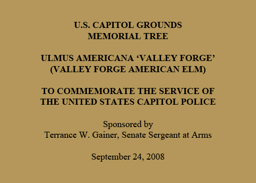 U.S. Capitol Grounds Memorial Tree  Ulmus americana 'valley forge' (Valley Forge American Elm)  To Commemorate the Service of the United States Capitol Police  Sponsored by Terrance W. Gainer, Senate Sergeant at Arms  September 24, 2008