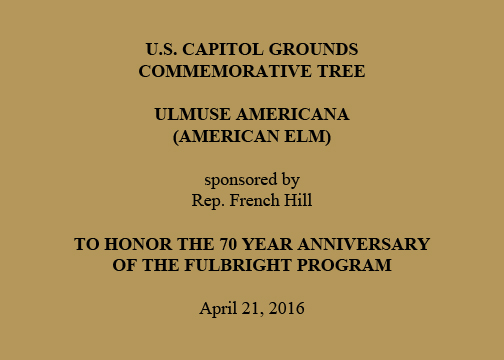 U.S. Capitol Grounds Commemorative Tree   Ulmuse americana (American Elm)  Sponsored by  Rep. French Hill  To Honor the 70 Year Anniversary of the Fulbright Program  Planted on  April 21, 2016