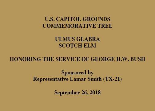 U.S. CAPITOL GROUNDS COMMEMORATIVE TREE, ULMUS GLABRA, Scotch Elm, Honoring the Service of George H.W. Bush, Sponsored by Representative Lamar Smith (TX-21), September 26, 2018