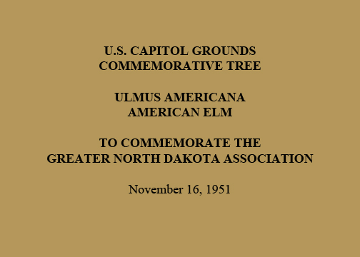 U.S. Capitol Grounds  Commemorative Tree   Ulmus americana  American Elm   To Commemorate the  Greater North Dakota Association   November 16, 1951