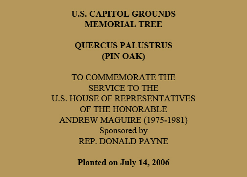 U.S. Capitol Grounds Memorial Tree   Quercus palustrus (Pin Oak)   To Commemorate the  Service to the  U.S. House of Representatives  of the Honorable  Andrew Maguire (1975-1981)   Sponsored by Rep. Donald Payne   Planted on July 14, 2006