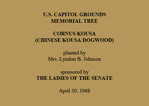 U.S. Capitol Grounds  Memorial Tree   Cornus kousa  (Chinese Kousa Dogwood)   planted by  Mrs. Lyndon B. Johnson   sponsored by  The Ladies of the Senate   April 30, 1968