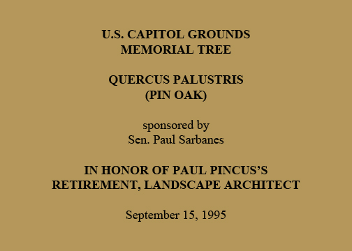 U.S. Capitol Grounds  Memorial Tree   Quercus palustris  (Pin Oak)   sponsored by  Sen. Paul Sarbanes   In Honor of Paul Pincus's  Retirement, Landscape Architect   September 15, 1995