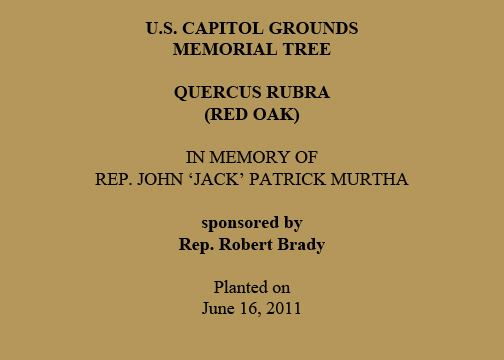 U.S. Capitol Grounds Memorial Tree  Quercus rubra (Red Oak)  In Memory of Rep. John 'Jack' Patrick Murtha  sponsored by Rep. Robert Brady  Planted on June 16, 2011