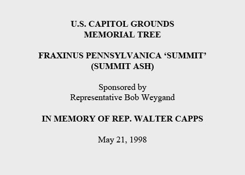 U.S. Capitol Grounds Memorial Tree  Fraxinus pennsylvanica 'summit' (Summit Ash)  Sponsored by Representative Bob Weygand  In Memory of Rep. Walter Capps  May 21, 1998