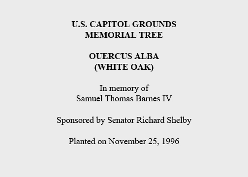 U.S. Capitol Grounds  Memorial Tree   Ouercus alba  (White Oak)   In memory of  Samuel Thomas Barnes IV   Sponsored by Senator Richard Shelby   Planted on November 25, 1996