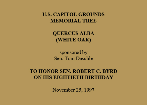U.S. Capitol Grounds  Memorial Tree   Quercus alba  (White Oak)   sponsored by  Sen. Tom Daschle   To Honor Sen. Robert C. Byrd  on His Eightieth Birthday   November 25, 1997