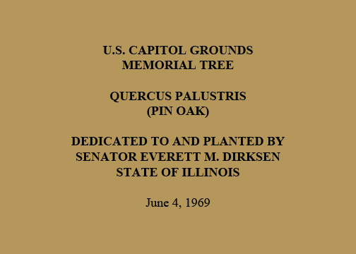 U.S. Capitol Grounds  Memorial Tree   Quercus palustris  (Pin Oak)   Dedicated to and Planted by  Senator Everett M. Dirksen  State of Illinois   June 4, 1969