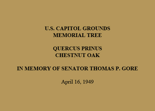 U.S. Capitol Grounds  Memorial Tree   Quercus prinus  Chestnut Oak   In Memory of Senator Thomas P. Gore   April 16, 1949