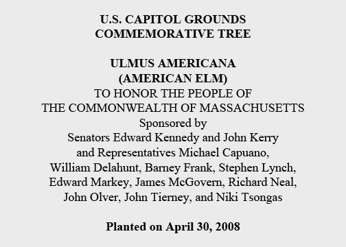 U.S. Capitol Grounds Commemorative Tree  Ulmus americana (American Elm)  To Honor the People of the Commonwealth of Massachusetts  Sponsored by Senators Edward Kennedy and John Kerry and Representatives Michael Capuano, William Delahunt, Barney Frank, Stephen Lynch, Edward Markey, James McGovern, Richard Neal, John Olver, John Tierney, and Niki Tsongas  Planted on April 30, 2008
