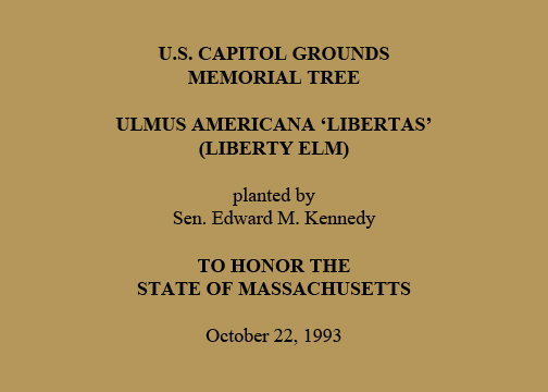 U.S. Capitol Grounds  Memorial Tree   Ulmus americana 'libertas'  (Liberty Elm)   planted by  Sen. Edward M. Kennedy   To Honor  the State of Massachusetts   October 22, 1993