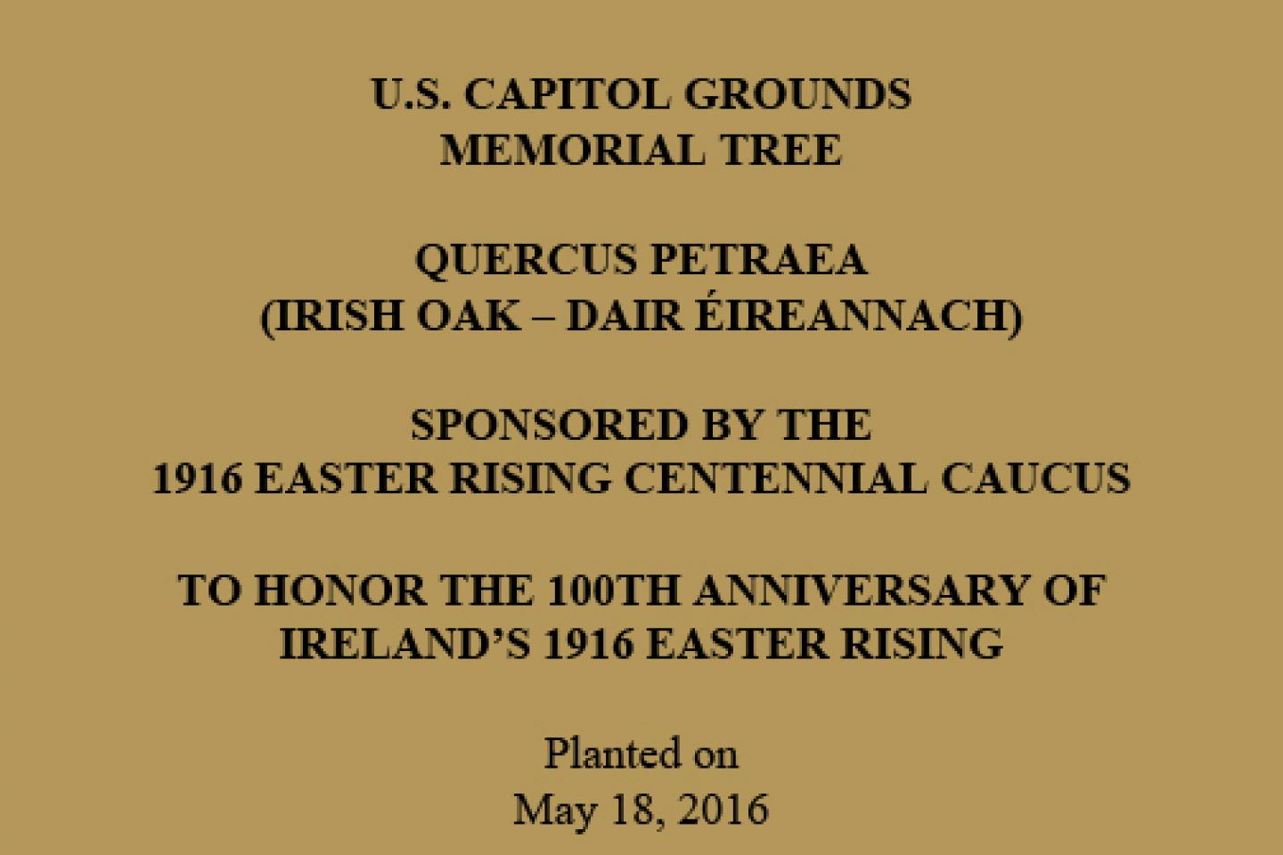 U.S. CAPITOL GROUNDS  COMMEMORATIVE TREE  QUERCUS PETRAEA (IRISH OAK – DAIR ÉIREANNACH)  SPONSORED BY THE 1916 EASTER RISING CENTENNIAL CAUCUS  TO HONOR THE 100th ANNIVERSARY OF IRELAND'S 1916 EASTER RISING  Planted on May 18, 2016