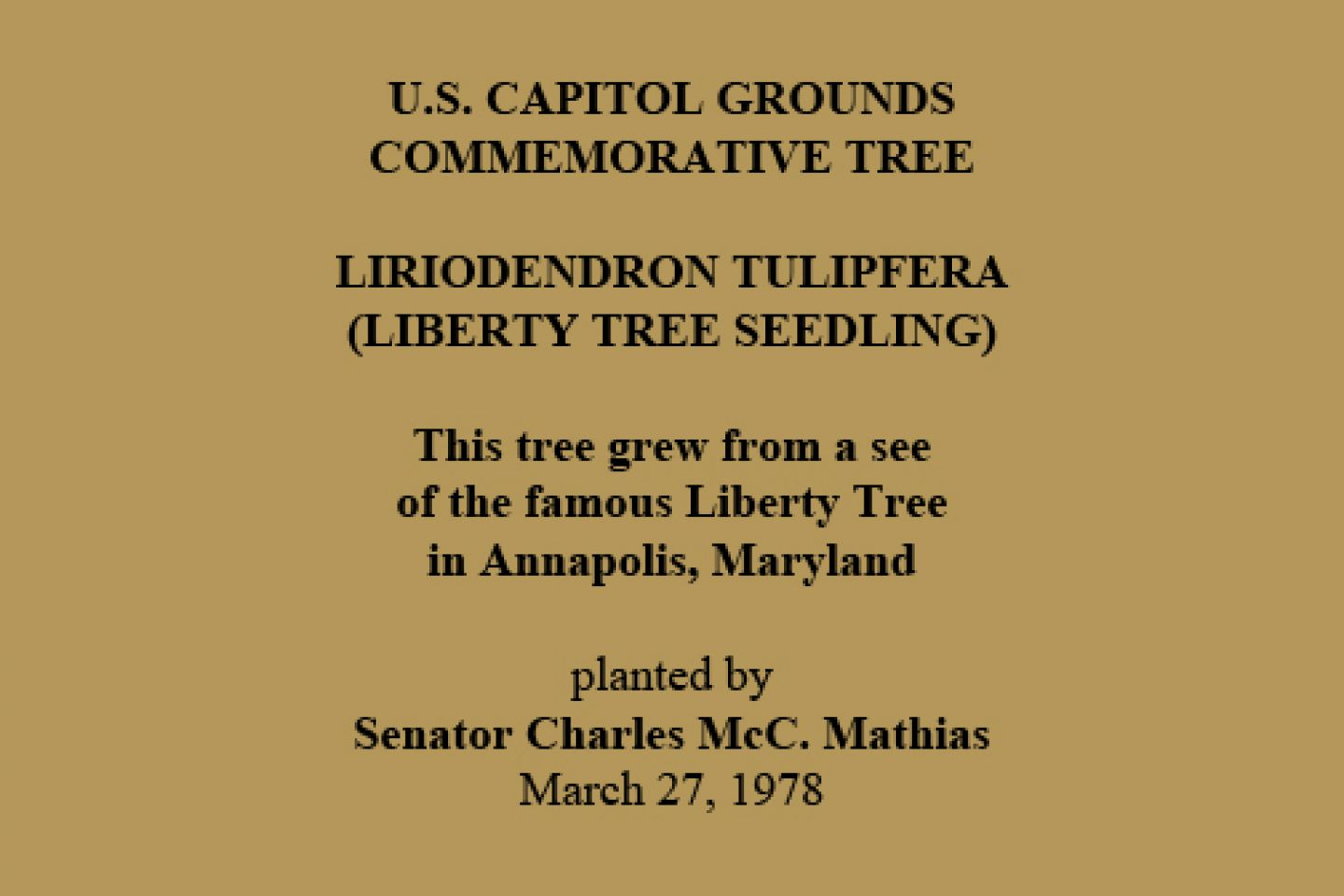 U.S. Capitol Grounds Commemorative Tree  Liriodendron tulipfera (Liberty Tree Seedling)  This tree grew from a see of the famous Liberty Tree in Annapolis, Maryland  planted by Senator Charles McC. Mathias March 27, 1978