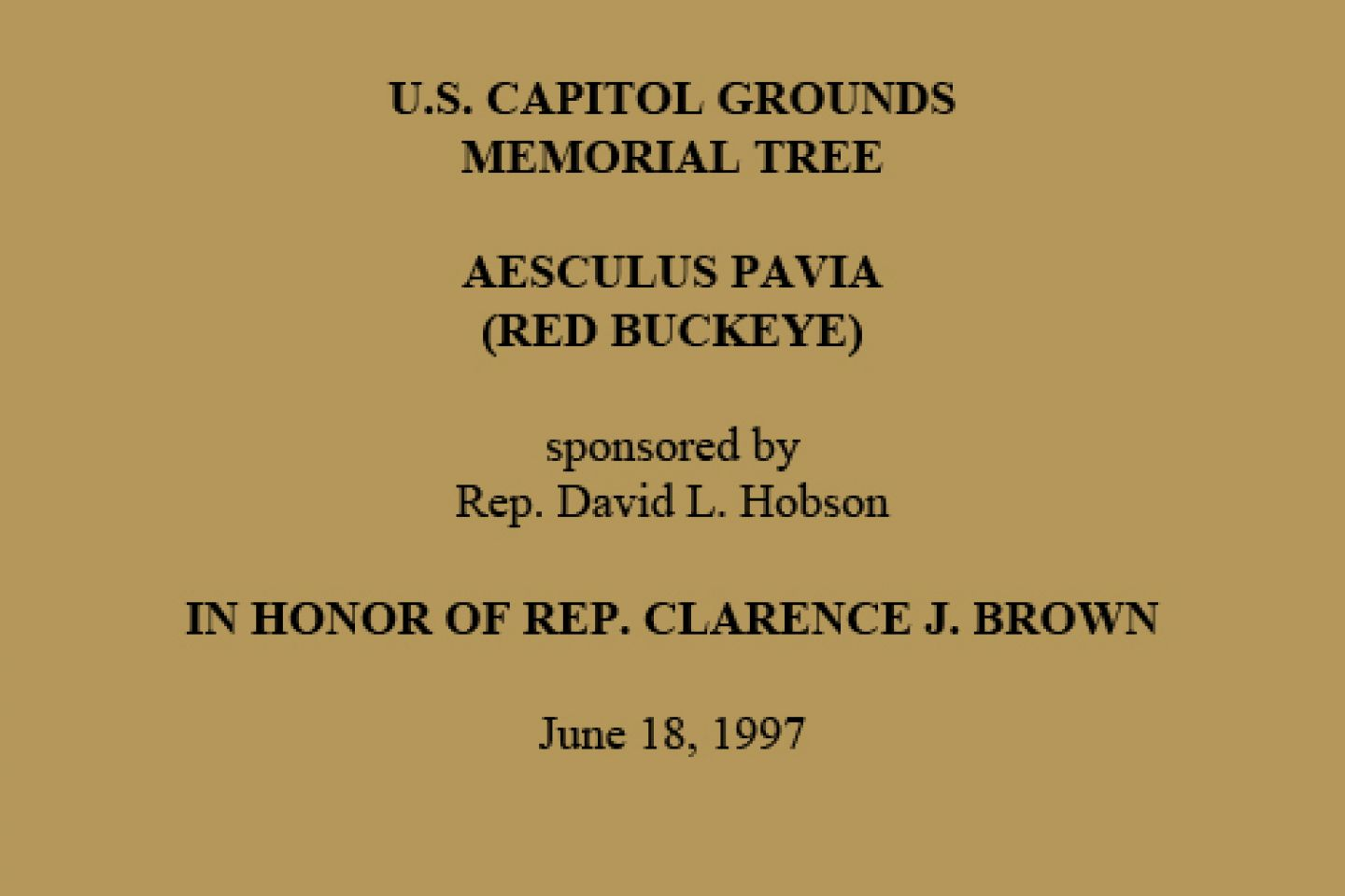 U.S. Capitol Grounds Memorial Tree  Aesculus pavia (Red Buckeye)  sponsored by Rep. David L. Hobson  In Honor of Rep. Clarence J. Brown  June 18, 1997