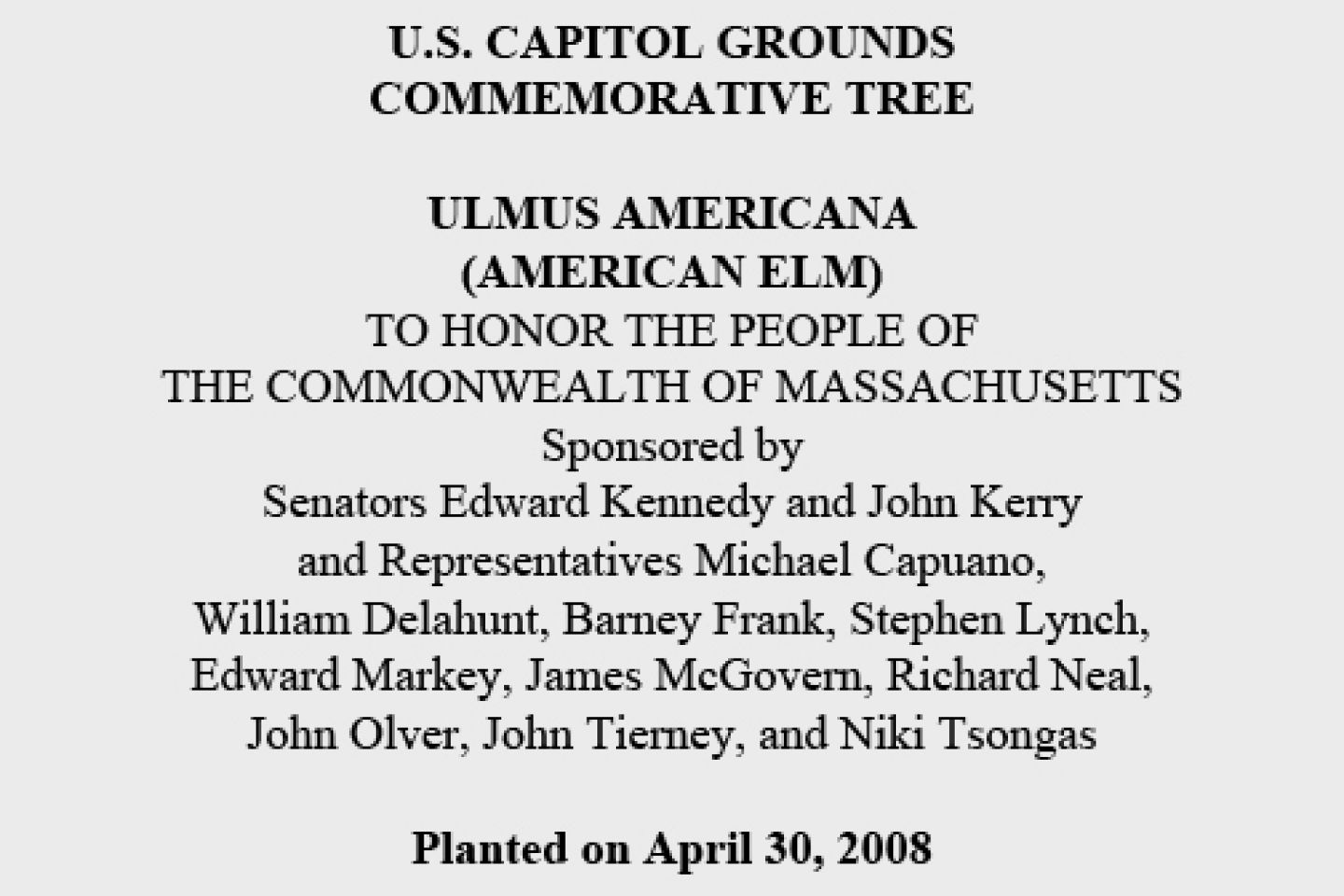 U.S. Capitol Grounds Commemorative Tree  Ulmus americana (American Elm)  To Honor the People of the Commonwealth of Massachusetts  Sponsored by...