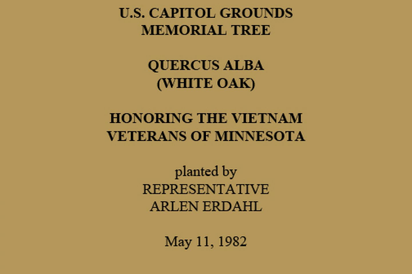 U.S. Capitol Grounds Memorial Tree  Quercus alba (White Oak)  Honoring the Vietnam Veterans of Minnesota  planted by Representative Arlen Erdahl  May 11, 1982