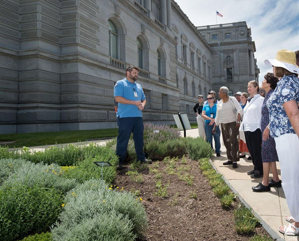 Rob Gimpel provided tours of the War Gardens to Library of Congress staff.