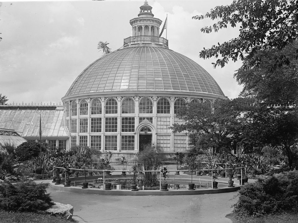 Palm House portion of the USBG Conservatory, circa 1917.