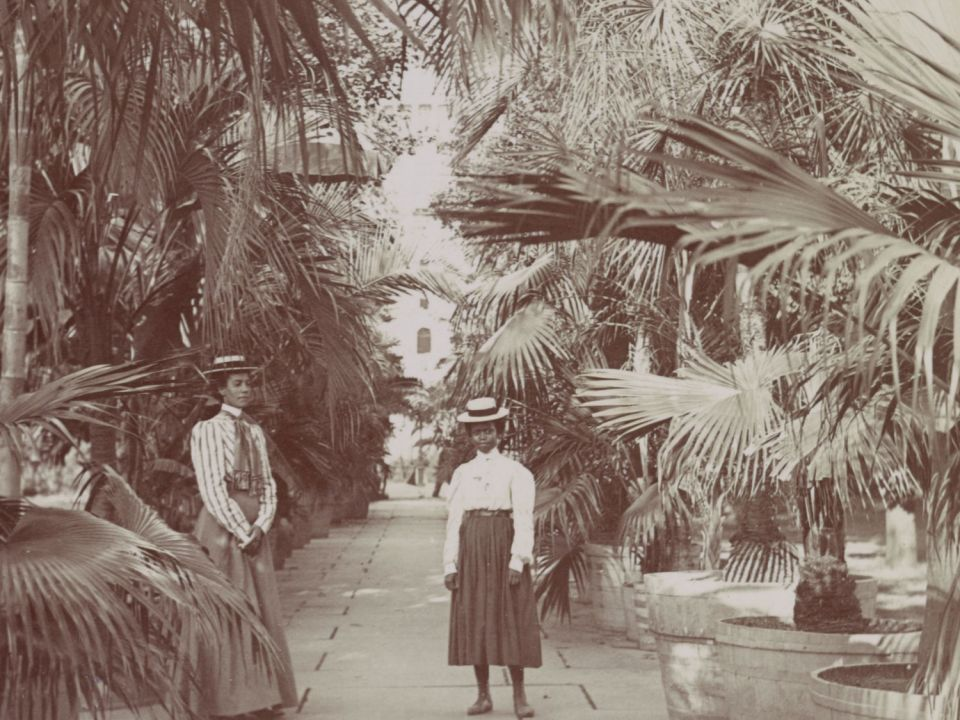 Visitors in the Palm Promenade, circa 1890.