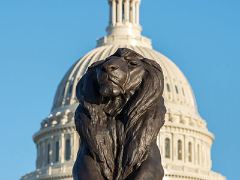 Lion sculpture of the Grant Memorial after restoration in 2017. Capitol Dome appears in the background.