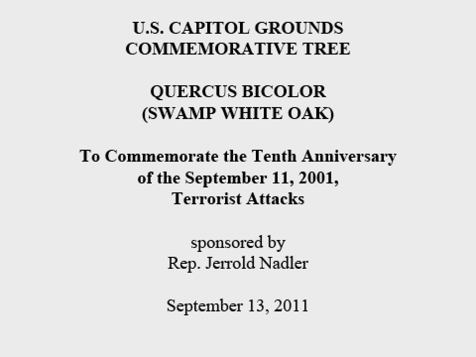 U.S. Capitol Grounds Commemorative Tree  Quercus bicolor (Swamp White Oak)  To Commemorate the Tenth Anniversary of the September 11, 2001, Terrorist Attacks  sponsored by Rep. Jerrold Nadler  September 13, 2011