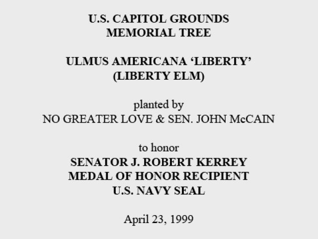 U.S. Capitol Grounds Memorial Tree  Ulmus americana 'liberty' (Liberty Elm)  planted by NO GREATER LOVE & SEN. JOHN McCAIN  to honor Senator J. Robert Kerrey Medal of Honor Recipient U.S. Navy Seal  April 23, 1999
