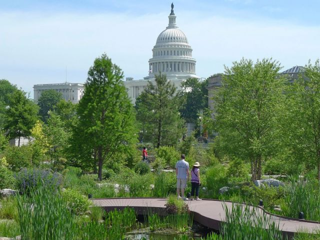 Visitors in the USBG National Garden with a view of the Conservatory and U.S. Capitol.