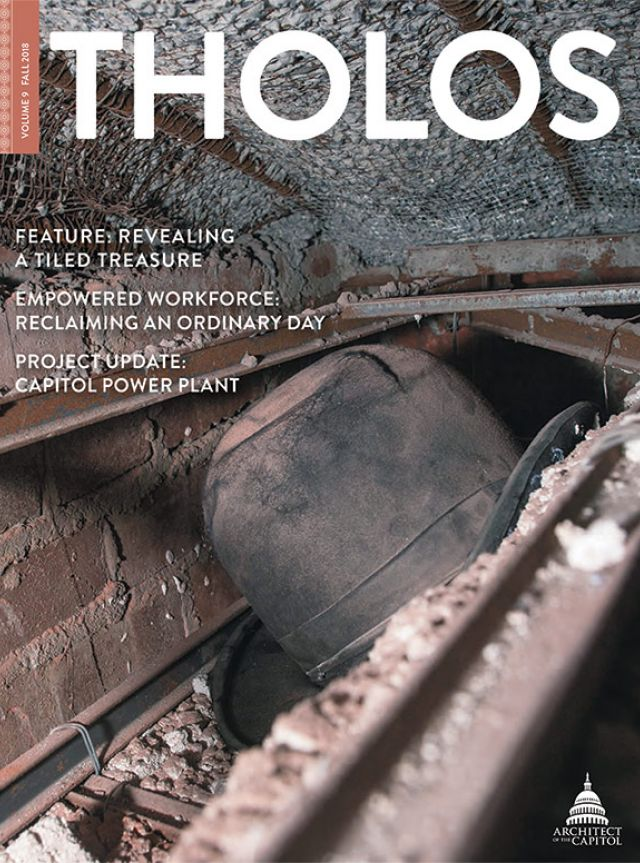 Tholos Magazine cover, Volume 9 Fall 2018.