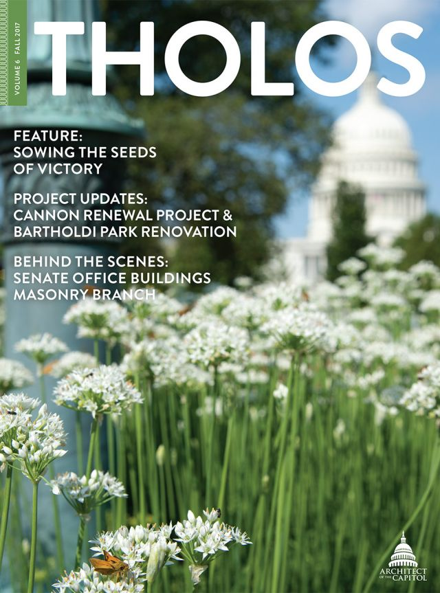 Tholos Magazine cover, Volume 6 Fall 2017.