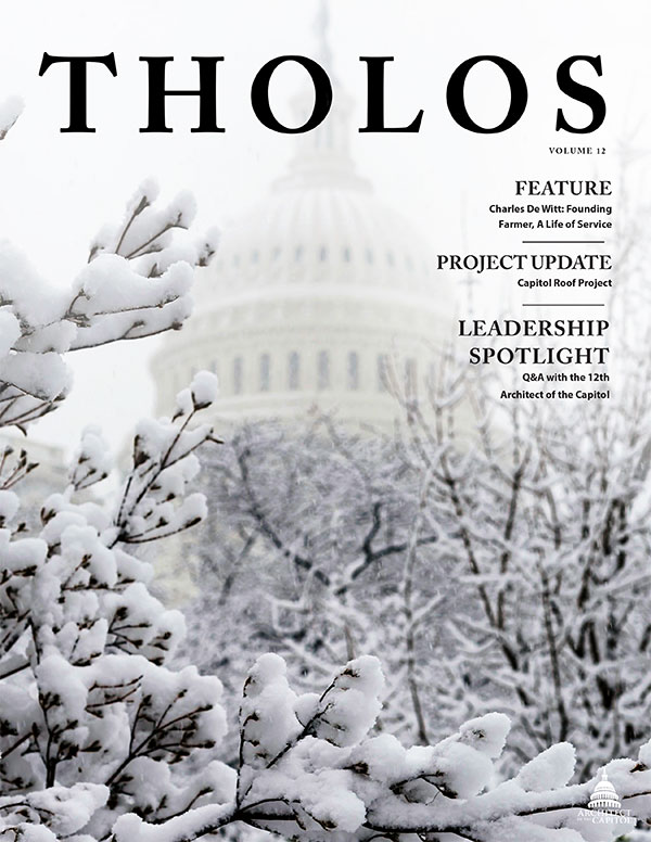 Tholos Magazine cover, Volume 12 Winter 2020.